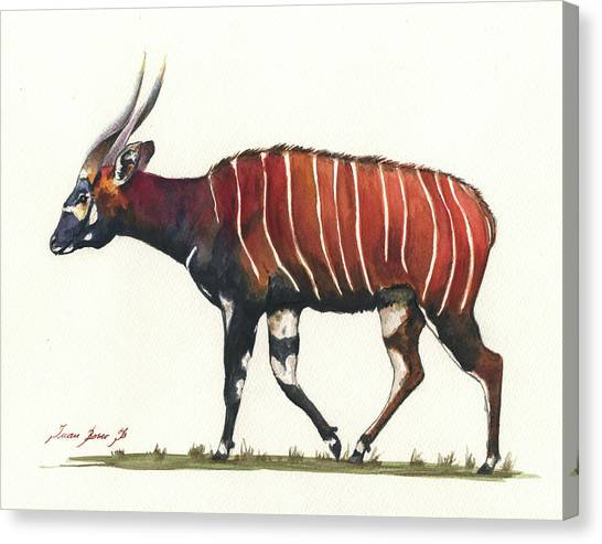 Percussion Instruments Canvas Print - Eastern Bongo  by Juan Bosco