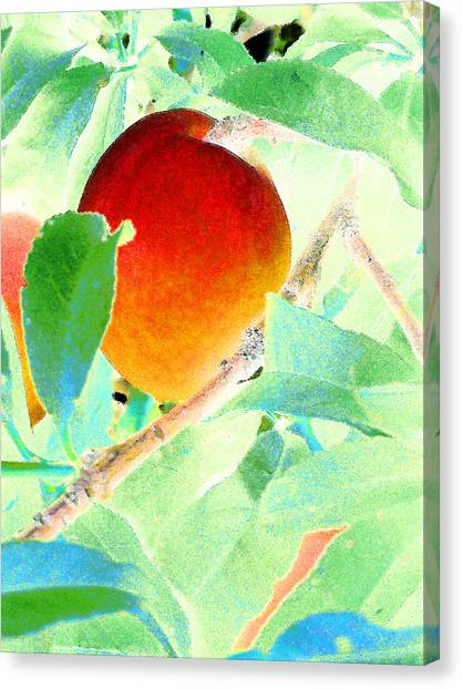 Eat A Peach Canvas Print