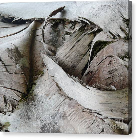Ebb And Flow Canvas Print by Donna McLarty