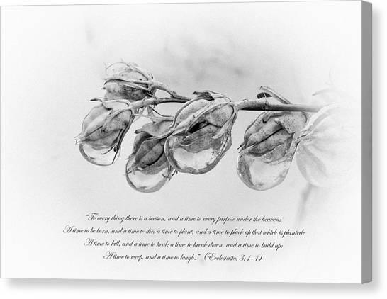 Ecclesiastes 3 Canvas Print