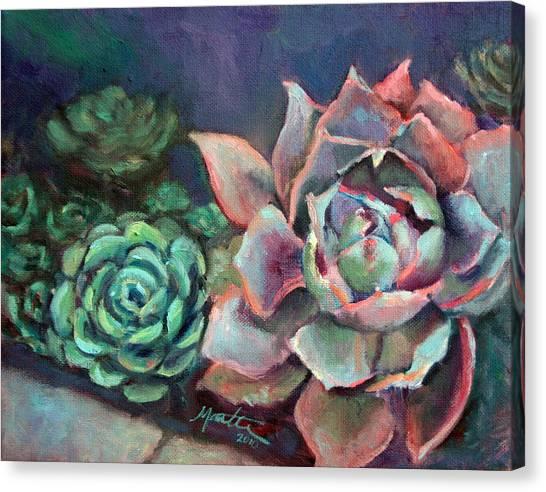 Echeveria Canvas Print by Athena Mantle
