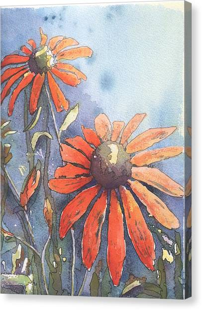 Echinacea Canvas Print by Robynne Hardison