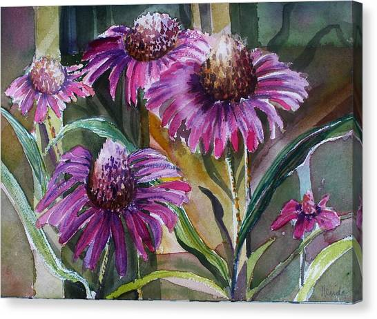 Canvas Print - Echinacea The Healing Daisy by Mindy Newman