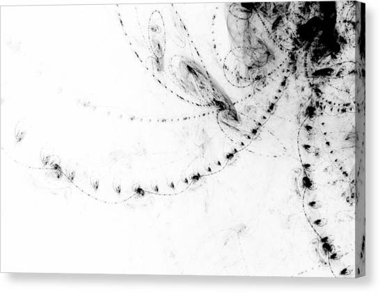 Black And White Canvas Print - Echo 2 by Scott Norris