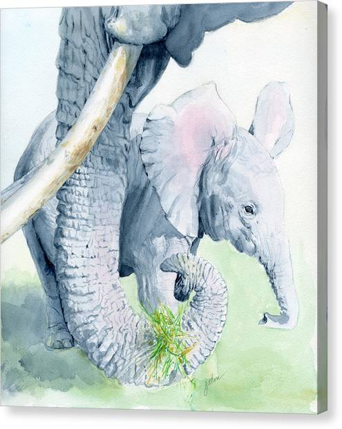 Elephants Canvas Print - Echo And Espirit by Galen Hazelhofer