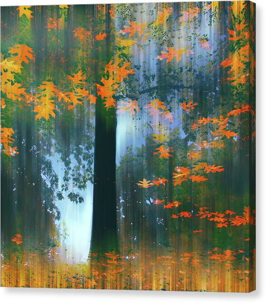 Canvas Print featuring the photograph Echoes Of Autumn by Jessica Jenney