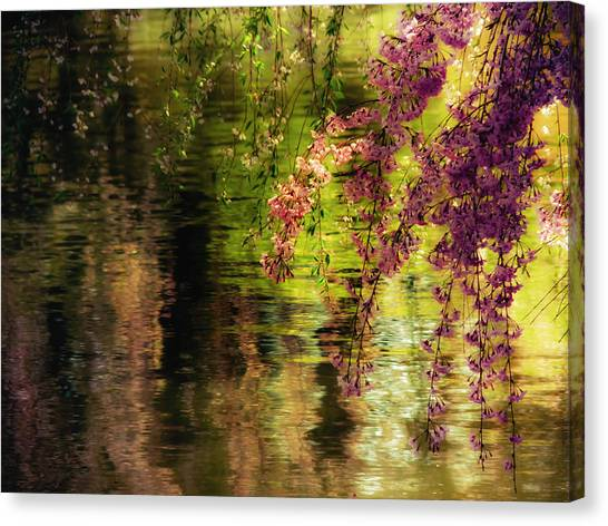 Botanic Canvas Print - Echoes Of Monet - Cherry Blossoms Over A Pond - Brooklyn Botanic Garden by Vivienne Gucwa