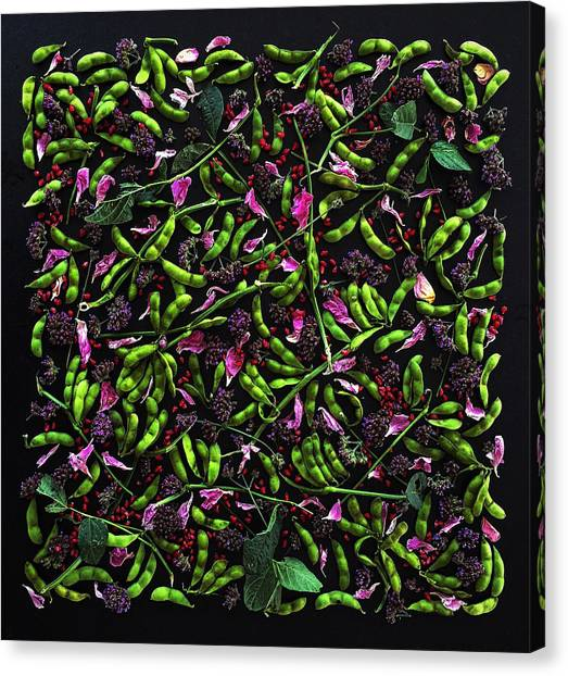 Edamame Patterns Canvas Print