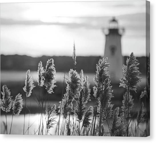 Black and white vineyard canvas print edgartown ma lighthouse at sunrise marthas vineyard cape cod