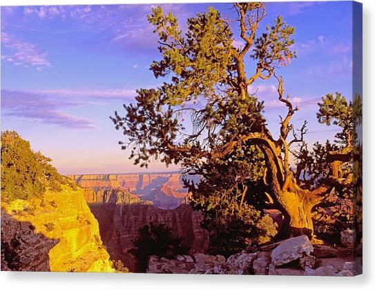 Edge Of Canyon Canvas Print by Alan Lenk
