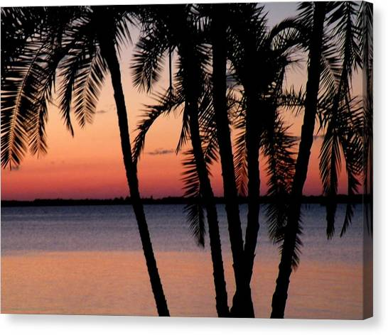 Edison Sunset Canvas Print by Rosalie Scanlon