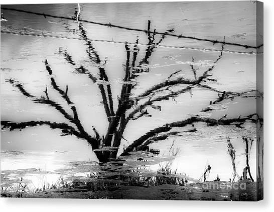 Eerie Reflections Canvas Print