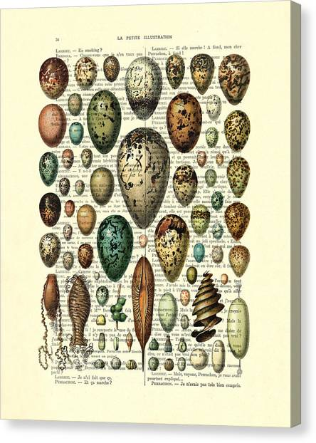 Media Canvas Print - Eggs Collection by Madame Memento