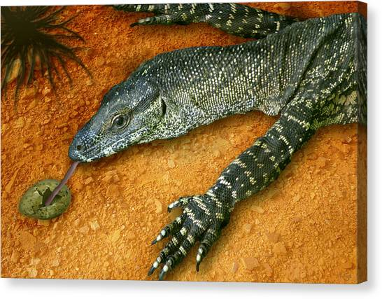 Lizards Canvas Print - Eggs For Breakfast by Holly Kempe