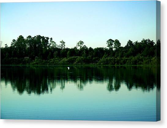 Egret And Rookery Canvas Print