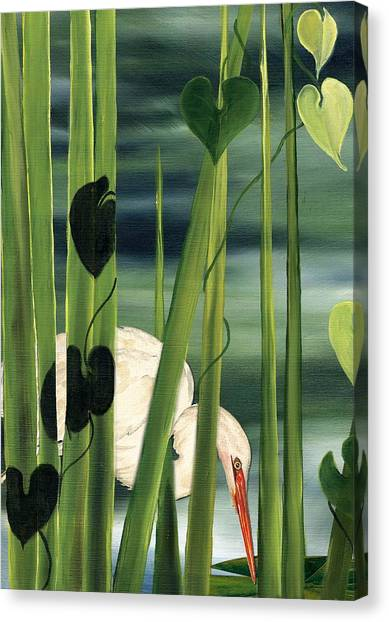 Egret In Reeds Canvas Print