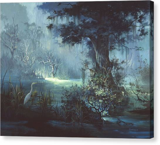Florida Swamp Canvas Print - Egret In The Shadows by Michael Humphries