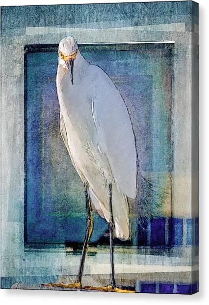 Egret Portrait Canvas Print