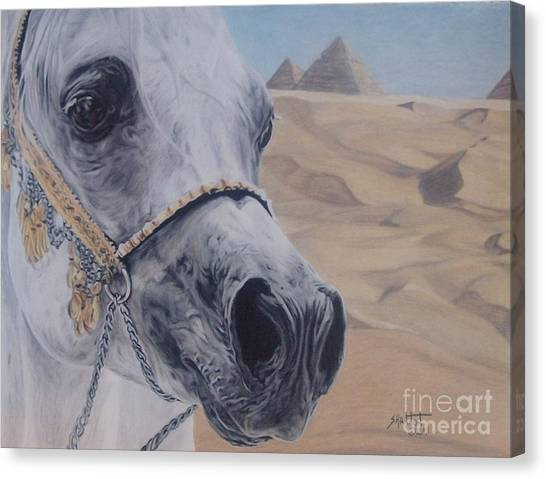 Arabian Desert Canvas Print - Egyptian King by Shannon Fleury