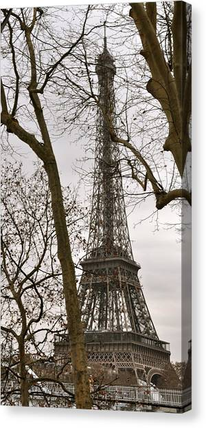 Eiffel Tower Through Branches Canvas Print