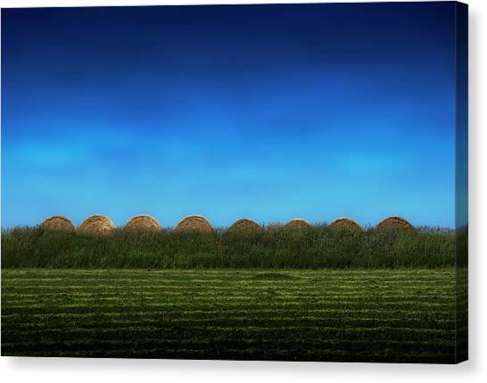 Eight Rolls Canvas Print