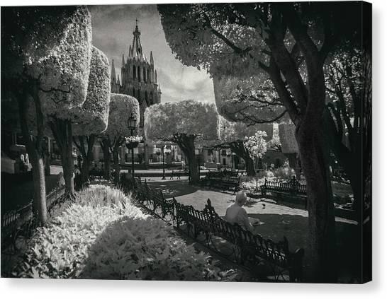 Guanajuato Canvas Print - el Jardin by Sean Foster