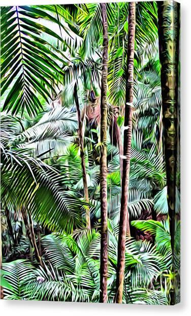 Amazon Rainforest Canvas Print - El Yunque Rainforest 3 by Carey Chen