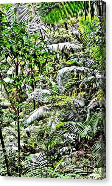 Forest Paths Canvas Print - El Yunque Rainforest 4 by Carey Chen