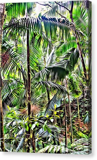 Amazon Rainforest Canvas Print - El Yunque Rainforest 6 by Carey Chen