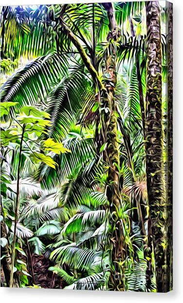 Amazon Rainforest Canvas Print - El Yunque Rainforest 7  by Carey Chen