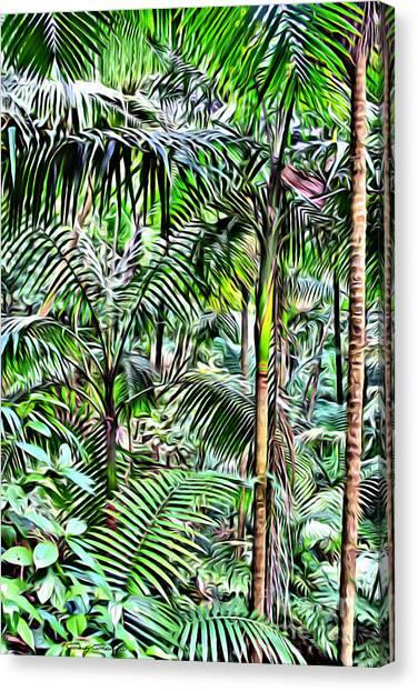 Forest Paths Canvas Print - El Yunque Rainforest by Carey Chen