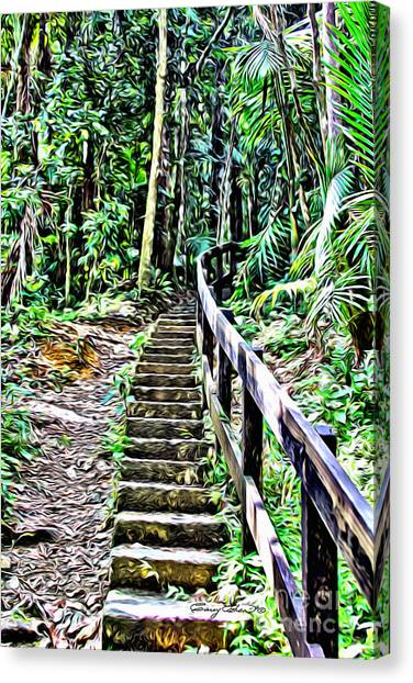 Tropical Rainforests Canvas Print - El Yunque Stairway by Carey Chen