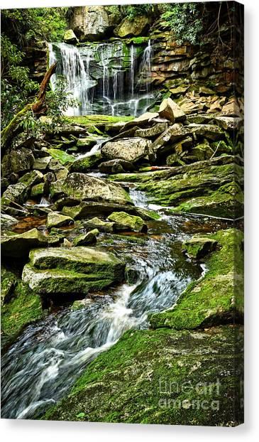 Elakala Falls At Blackwater Falls State Park Canvas Print