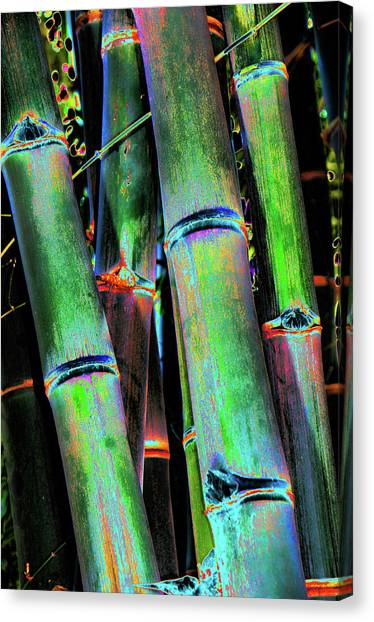 Electric Bamboo 4 Canvas Print