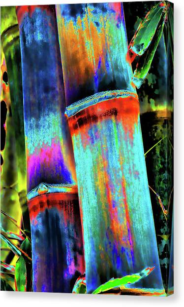 Electric Bamboo 5 Canvas Print