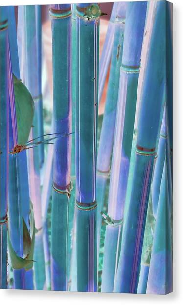 Electric Bamboo 8 Canvas Print