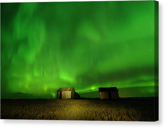 Electric Green Skies Canvas Print