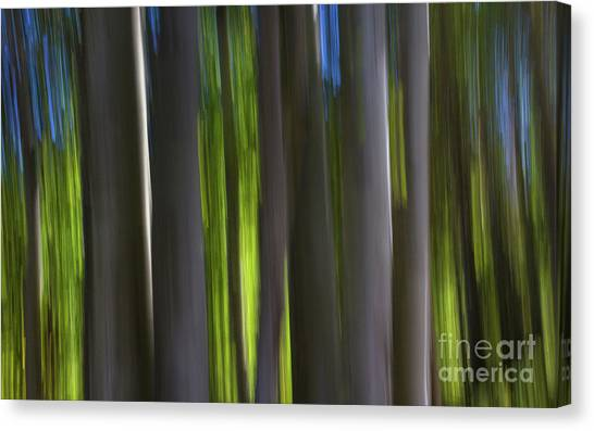 Electric Light  Canvas Print