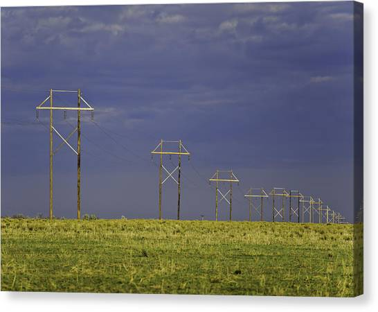 Electric Pasture Canvas Print