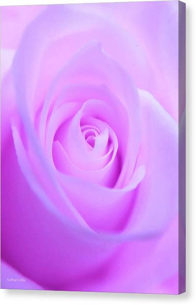 Electric Pink Canvas Print