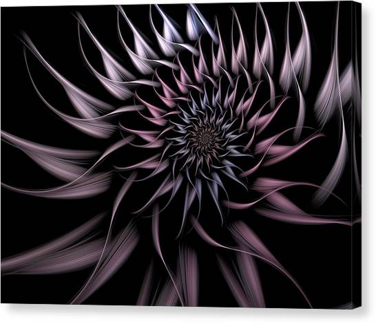 Apophysis Canvas Print - Elegant Innocence by Amorina Ashton