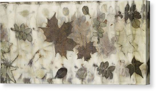 Elements Of Autumn Canvas Print