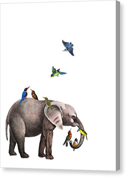 Media Canvas Print - Elephant With Birds Illustration by Madame Memento
