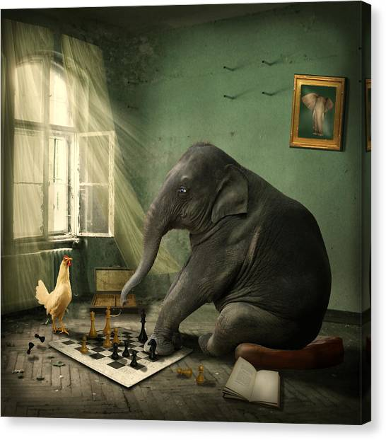Elephants Canvas Print - Elephant Chess by Ethiriel  Photography