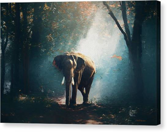Elephant In The Mist - Painting Canvas Print