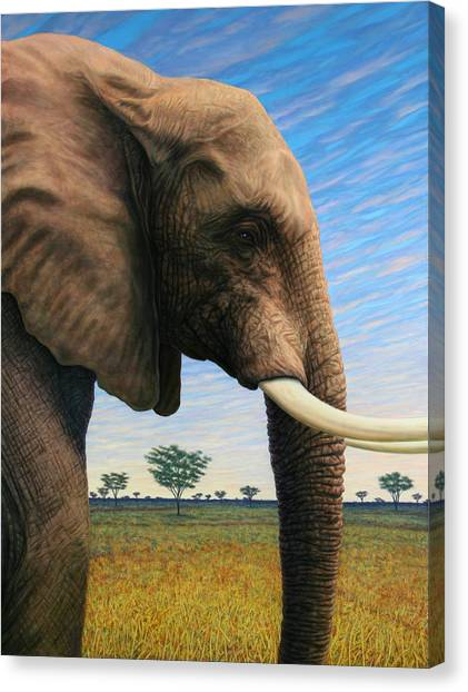African Canvas Print - Elephant On Safari by James W Johnson