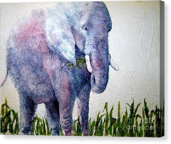 Elephant Sanctuary Canvas Print