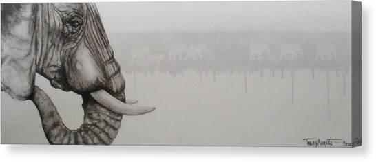 Elephant Tears Canvas Print