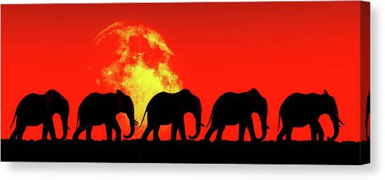 Elephants Walk In The Red Sky Canvas Print