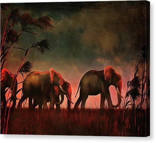 Elephants Walking Together Canvas Print